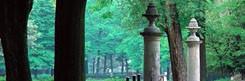 parco-delle-cascine-florence