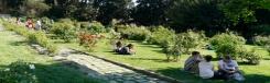 Romantische rozentuin in Florence