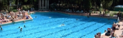 Neem een duik in het zwembad!
