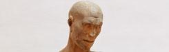 Habakuk, de profeet met het meloenhoofd van Donatello